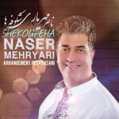 naser mehryari shekoufeha دانلود اهنگ شکوفه ها ناصر مهریاری